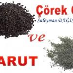 ÇÖREK OTU VE BARUT – Süleyman DAĞISTANLI
