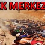 TEK MERKEZ ÇOK ŞUBE – Süleyman DAĞISTANLI