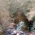 Altın madenine izin çıktı, 24 köyün içme suyu tehlikede