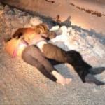 Van'da 3 kişi donarak öldü