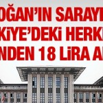 Erdoğan'ın sarayı için Türkiye'deki herkesin cebinden 18 lira alındı