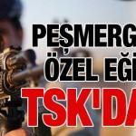 TSK, Peşmerge'ye ileri silah eğitimi verecek