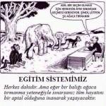 Karikatür – Türkiye'deki eğitim sistemi…