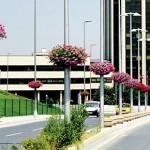 İstanbul'da çiçek dikmek için 32 milyon lira harcandı