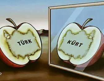 turk-kurt