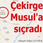 Çekirge Musul'a sıçradı – Hüseyin Yahya CEVHER