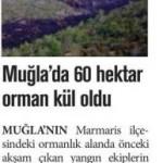 Muğla'da 60 hektar orman kül oldu
