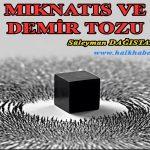 MIKNATIS VE DEMİR TOZU – Süleyman DAĞISTANLI