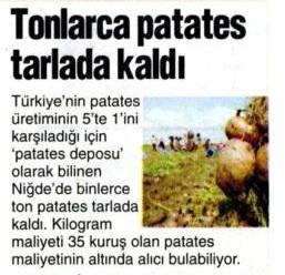 tonlarca-patates-tarlada-kaldi