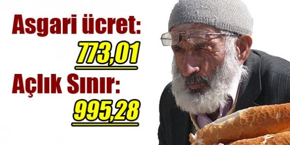 asgari_ucret_773_aclik_siniri_995_lira