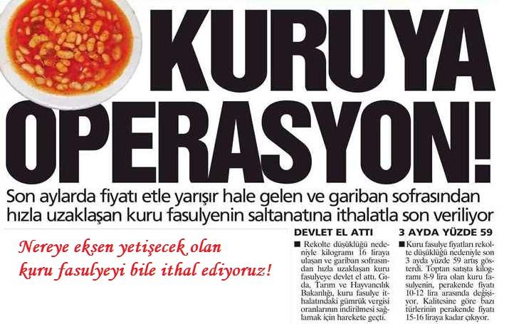 kurufasulye-ithalati