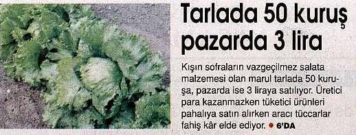 tarla-marul