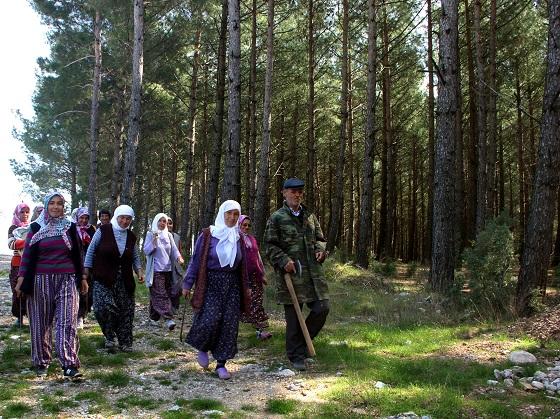 """Köy halkından """"ağaçlarımı kestirmem"""" eylemi"""