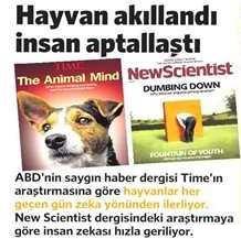 hayvan-insan