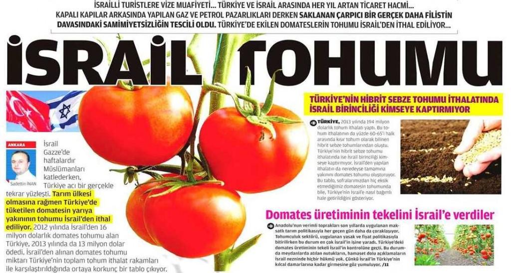 israil-tohumu