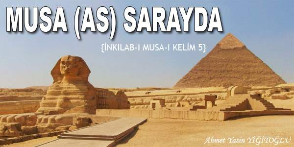musa-as-sarayda