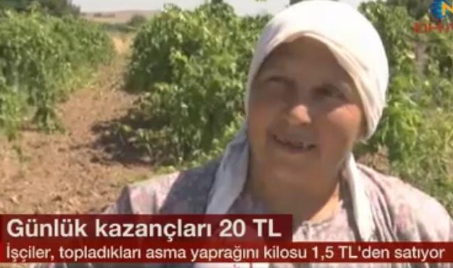 kazanc-20tl