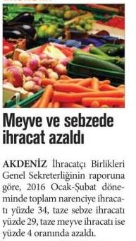 meyve-sebze-ihracati