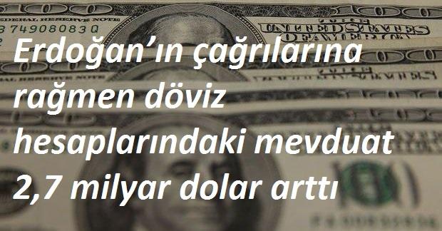 dolar-artti